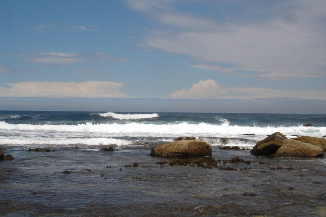 ocean at copa
